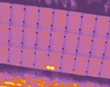 Nahaufnahme einer Photovoltaikanlage mit zwei Zellschäden